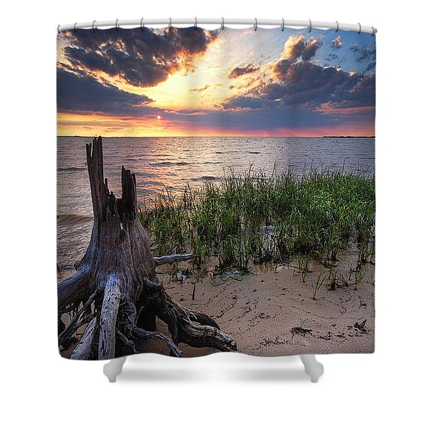 Stumps And Sunset On Oyster Bay Shower Curtain