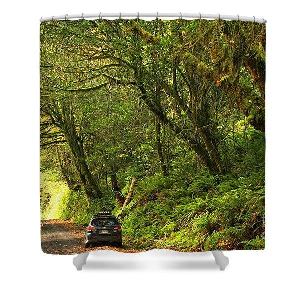 Subaru In The Rainforest Shower Curtain