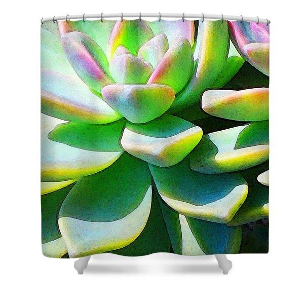 Succulent - Plant Art By Sharon Cummings Shower Curtain
