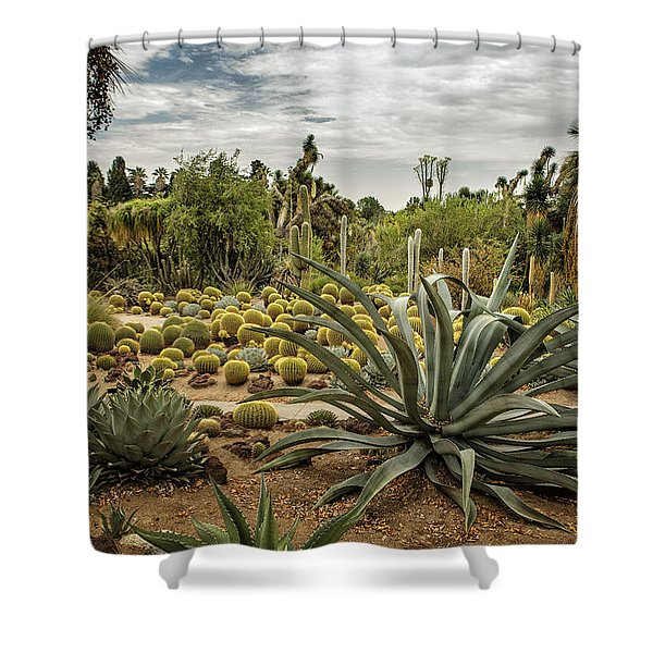 Succulents At Huntington Desert Garden No. 3 Shower Curtain