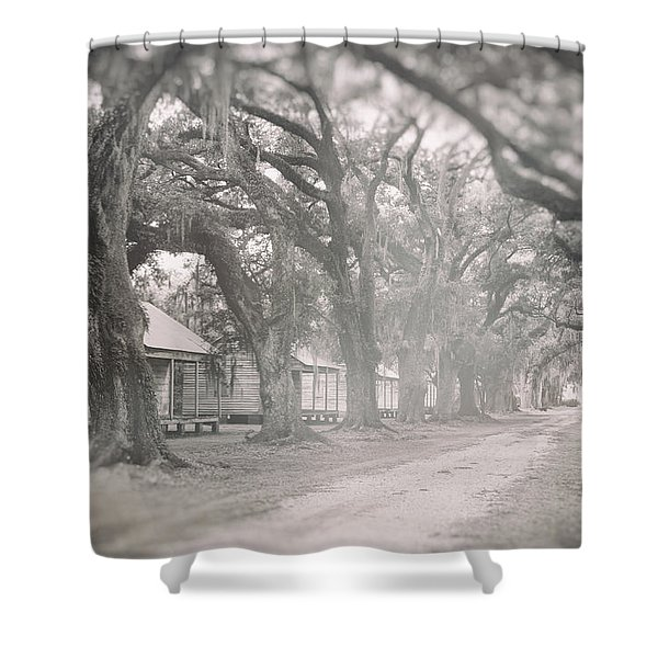 Sugar Cane Plantation Shower Curtain