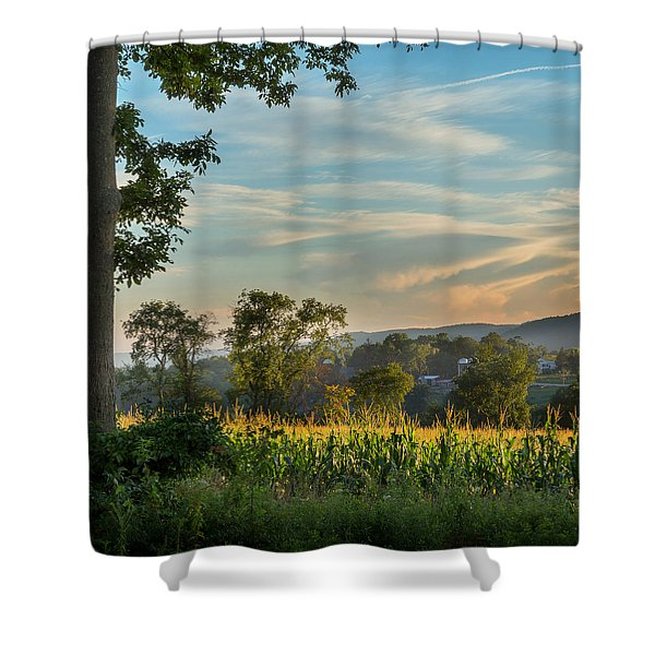 Summer Corn Square Shower Curtain