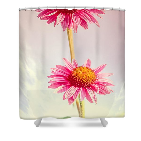 Summer Impressions Cone Flowers Shower Curtain