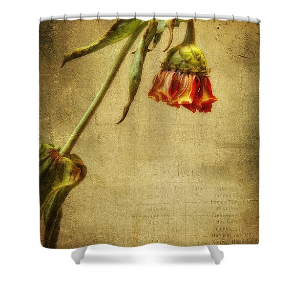 Summer Is Gone Shower Curtain