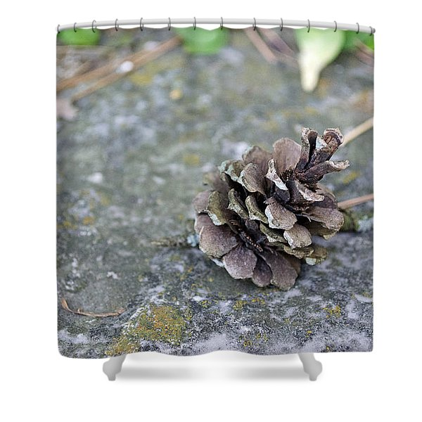 Summer Pinecone Shower Curtain