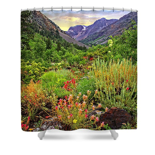 Summer Wildflowers In Lundy Canyon Shower Curtain