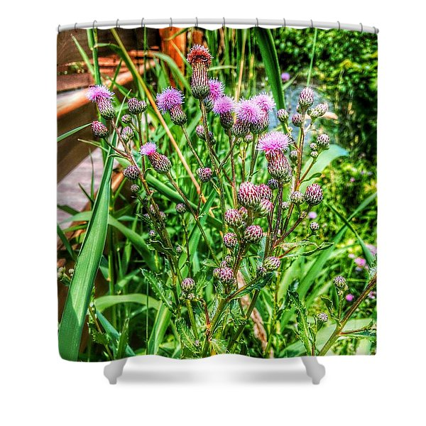Summer Wildflowers Shower Curtain