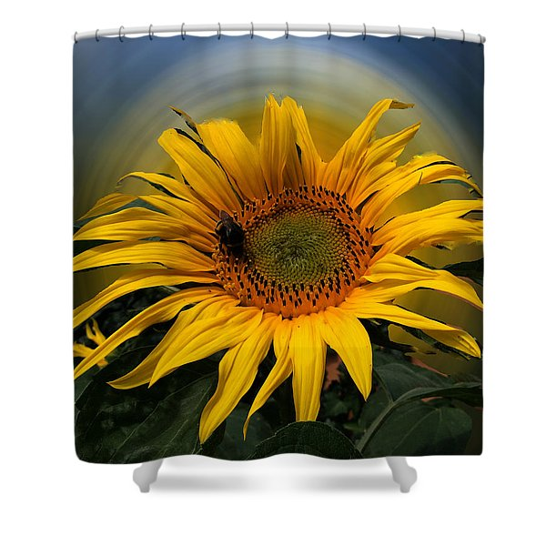 Sun Flower Summer 2014 Shower Curtain