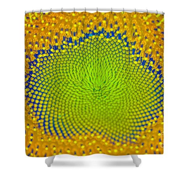 Sunflower Center Shower Curtain