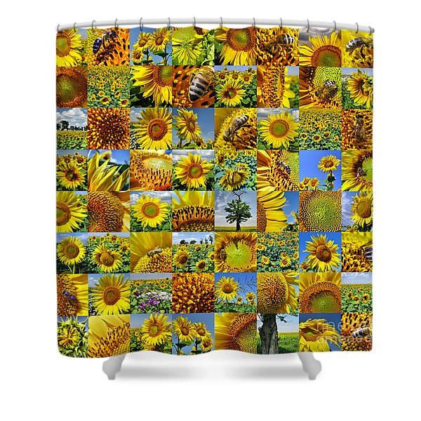 Sunflower Field Collage In Yellow Shower Curtain