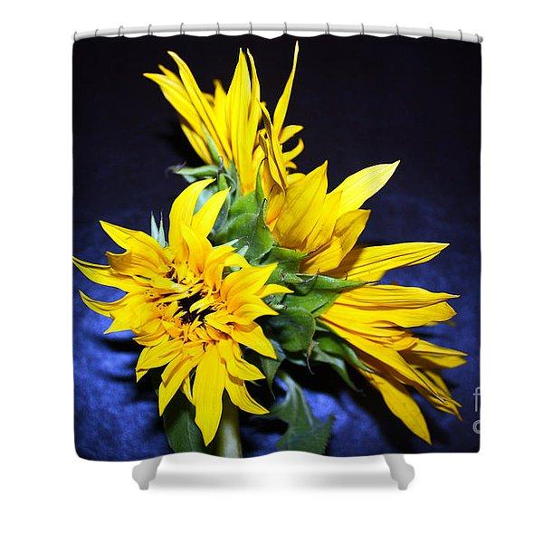 Sunflower Portrait Shower Curtain