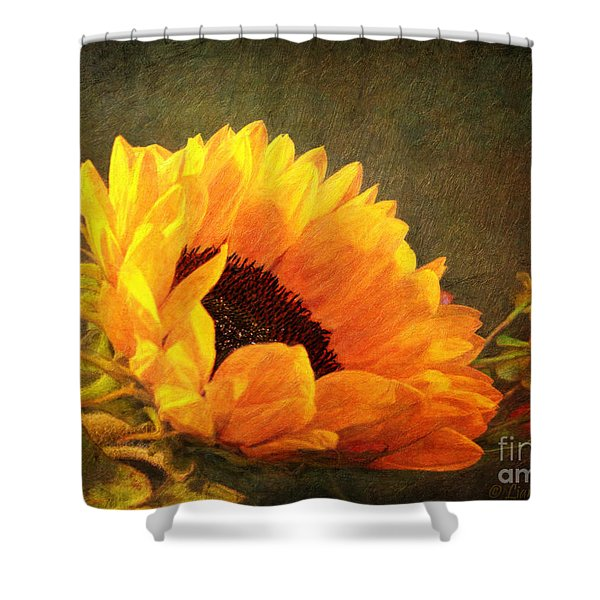 Sunflower - You Are My Sunshine Shower Curtain