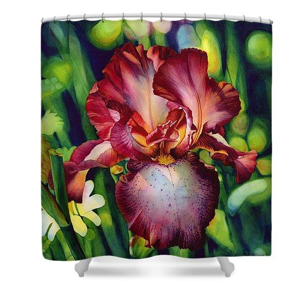Sunlit Iris Shower Curtain