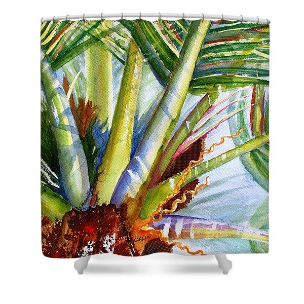 Sunlit Palm Fronds Shower Curtain