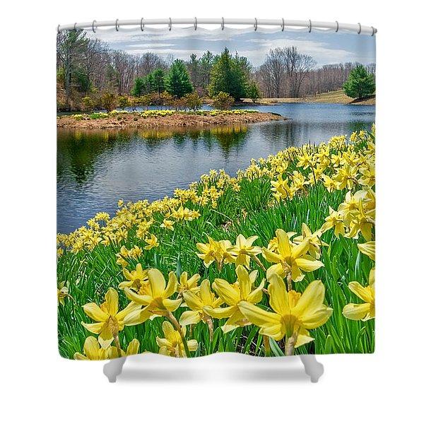 Sunny Daffodil Shower Curtain