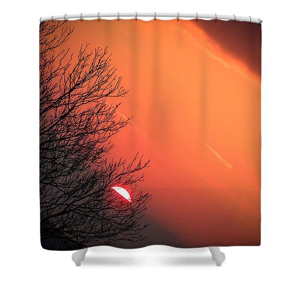 Sunrise And Hibernating Tree Shower Curtain
