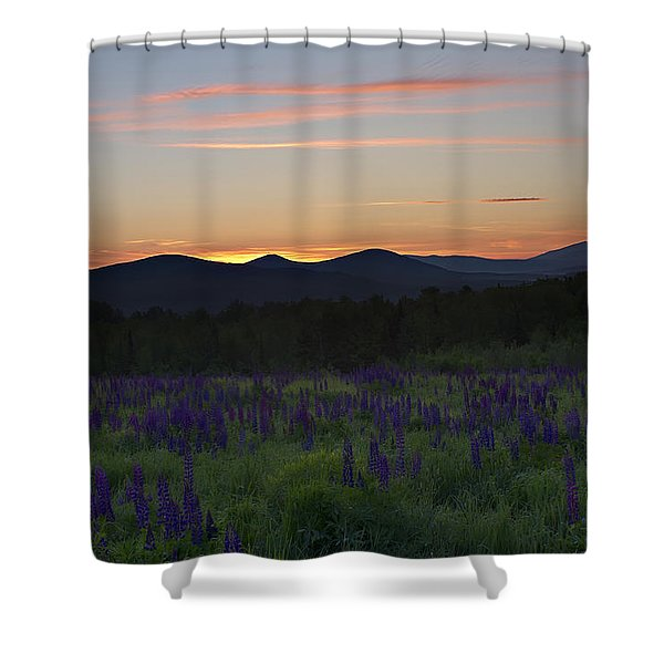 Sunrise Over A Field Of Lupines Shower Curtain