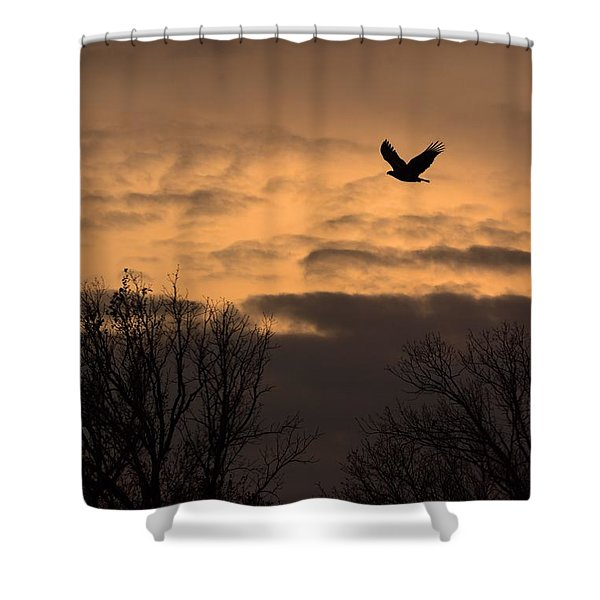 Sunset Eagle Shower Curtain