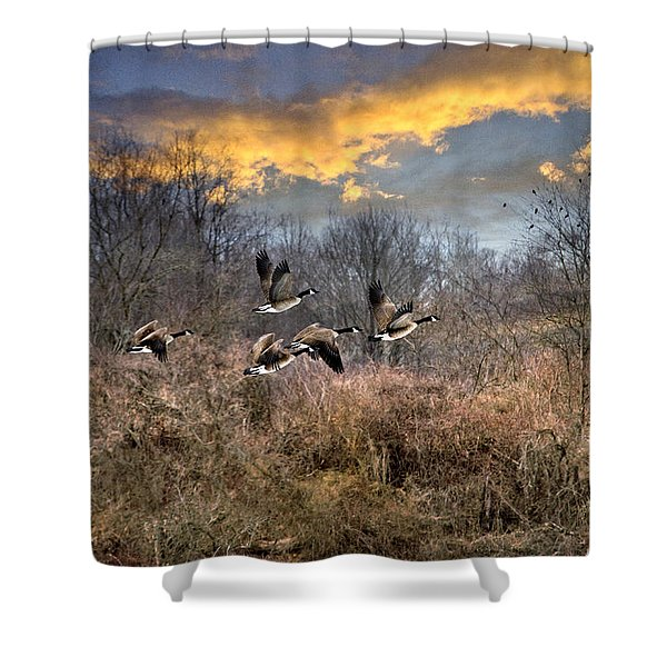 Sunset Geese Shower Curtain