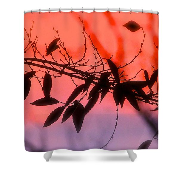 Sunset Serenade Shower Curtain