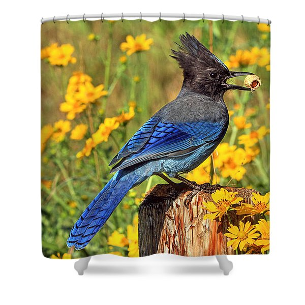 Sunshiny Day Shower Curtain