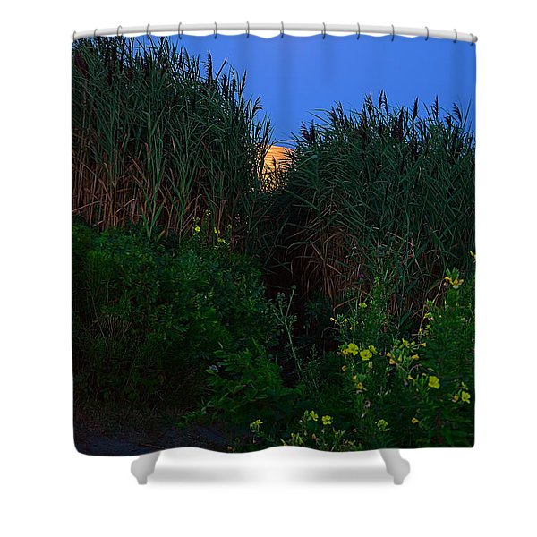 Supermoon 2014 -color Shower Curtain