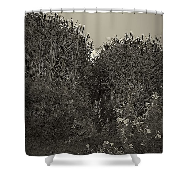 Supermoon 2014 Monochrome Shower Curtain