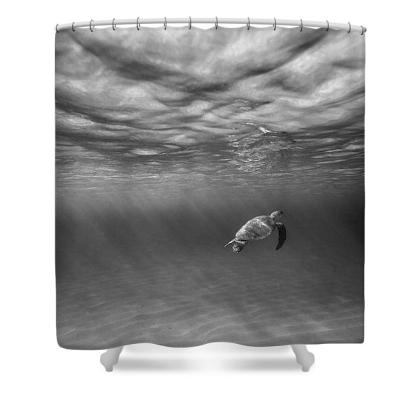 Suspended Animation. Shower Curtain