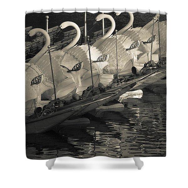 Swan Boats In A River, Boston Public Shower Curtain