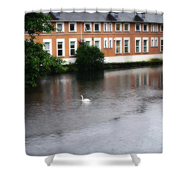 Swan In Dublin Shower Curtain