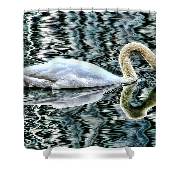 Swan On Lake Eola By Diana Sainz Shower Curtain