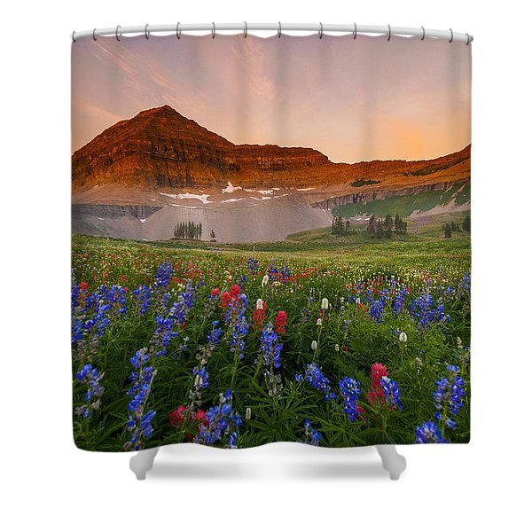 Sweeping Gaze Shower Curtain