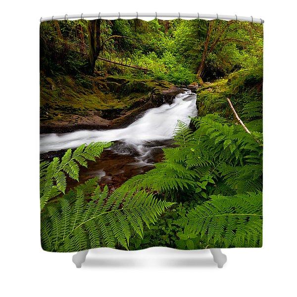 Sweet Creek Ferns Shower Curtain