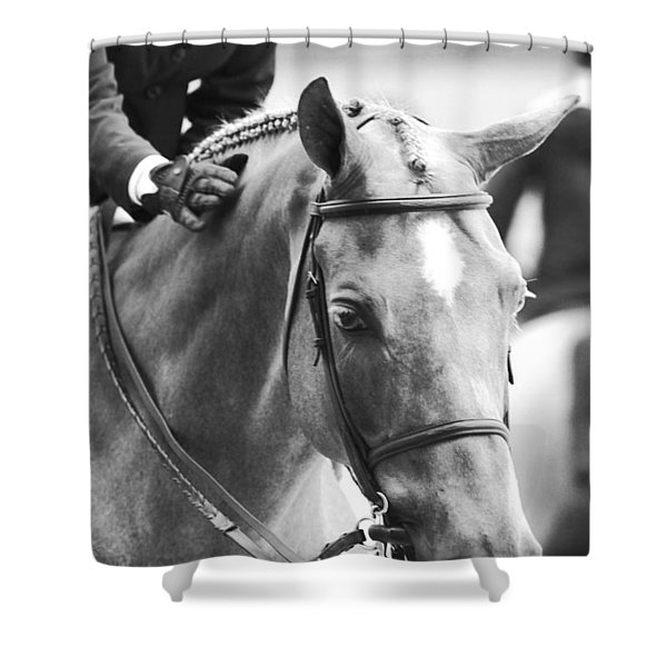 Sweet Pony Shower Curtain