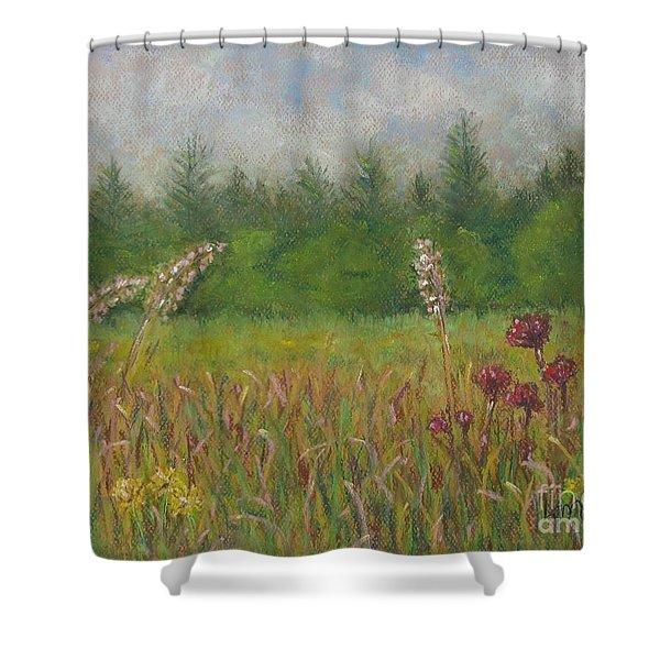 Calm Culloden Shower Curtain