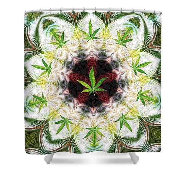 Sweetleaf Mandala Shower Curtain