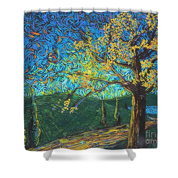 Swing By The Road Shower Curtain