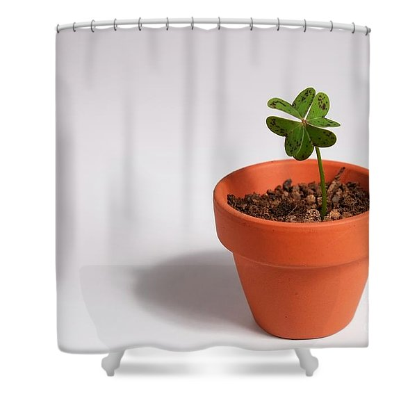 Symbol Of Good Luck Shower Curtain