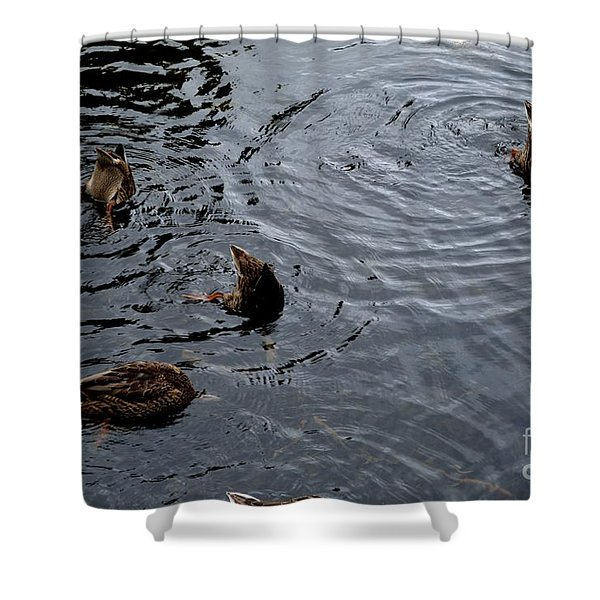 Shower Curtain featuring the photograph Synchronised Swimming Team by Scott Lyons
