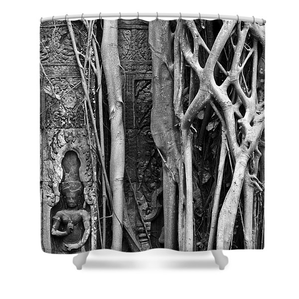 Ta Prohm Roots And Stone 09 Shower Curtain