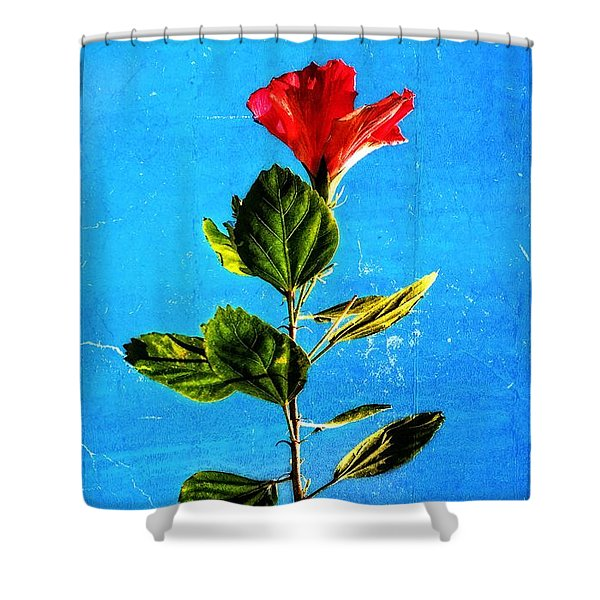 Tall Hibiscus - Flower Art By Sharon Cummings Shower Curtain