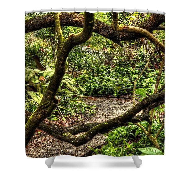 Tangled Path Shower Curtain