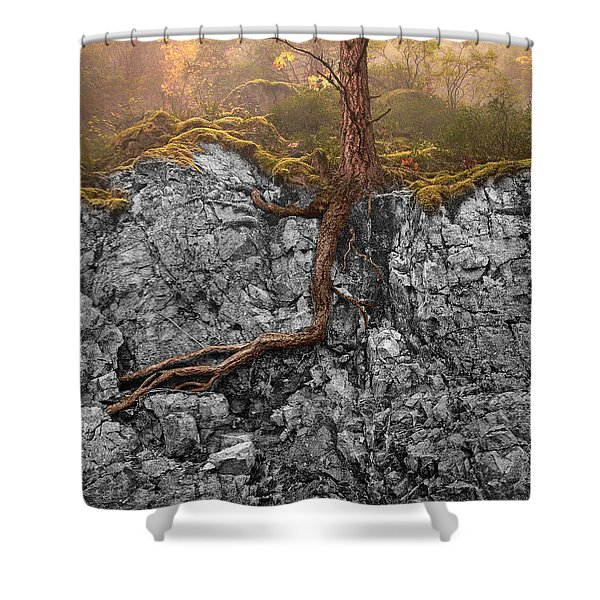 Taproot Shower Curtain