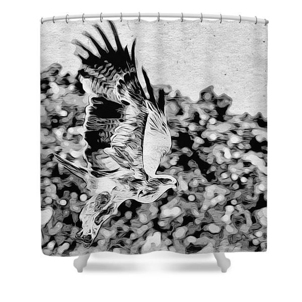 Shower Curtain featuring the photograph Tawny Eagle Flighing Away by Perla Copernik