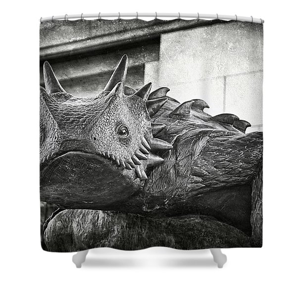 Tcu Horned Frog 2014 Shower Curtain