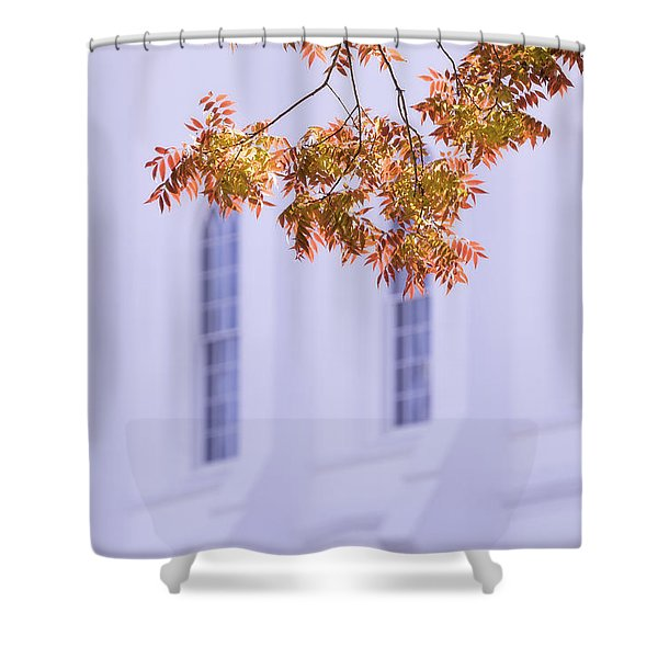 Temple Accent Shower Curtain
