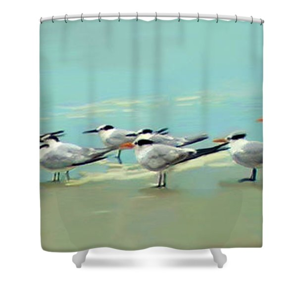 Tern Tern Tern Shower Curtain