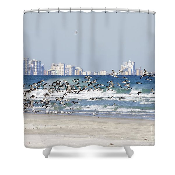 Terns On The Move Shower Curtain