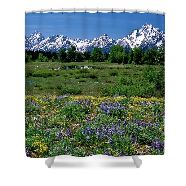 Teton Grandeur Shower Curtain