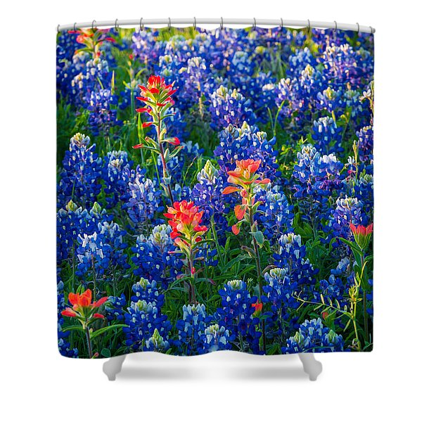 Texas Colors Shower Curtain